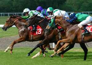 Uk Event Services Horse Race Nights Video Horse Race